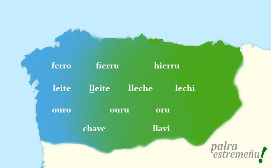 mapa vocabulariu
